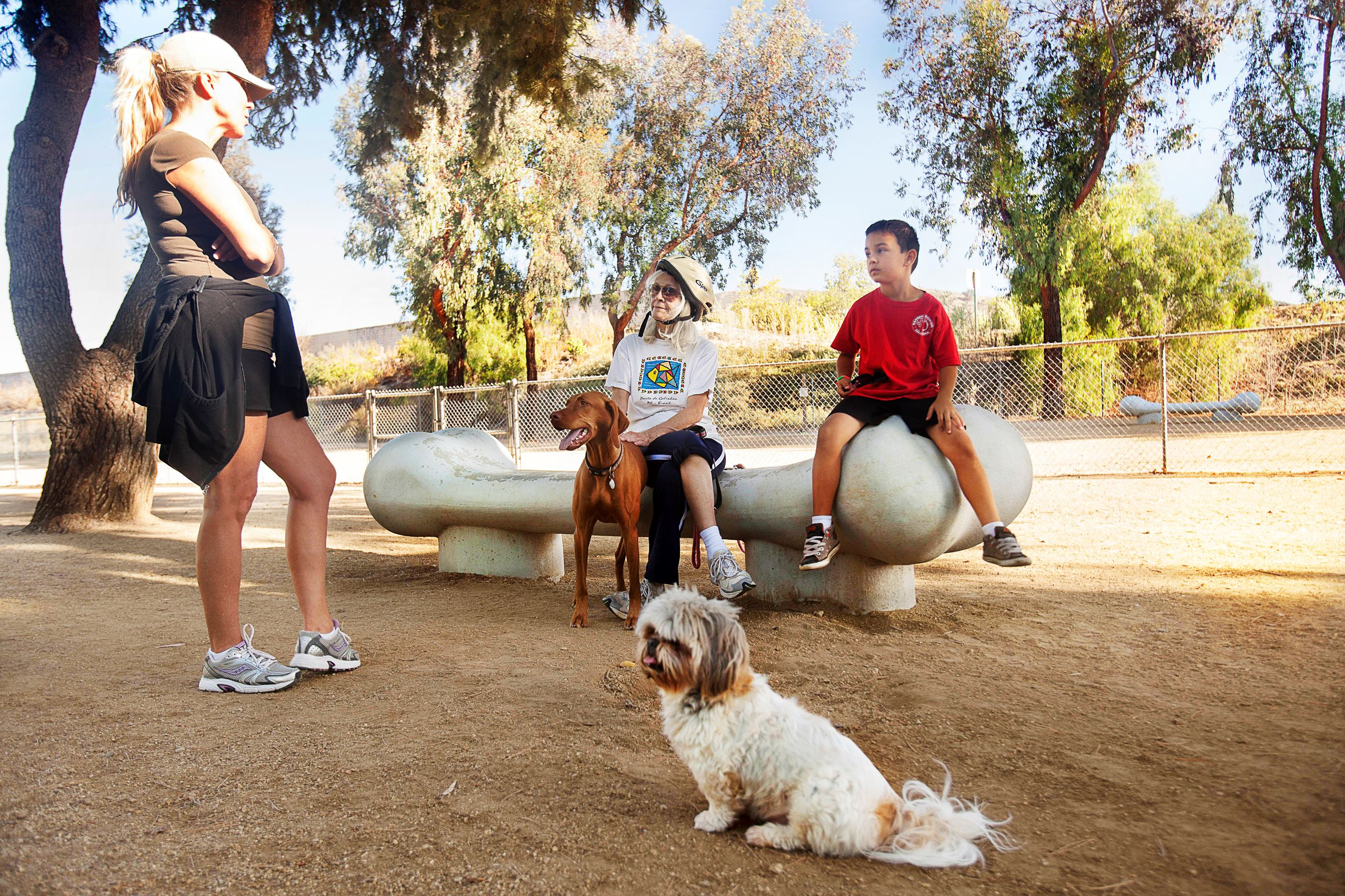 Moorpark Dog Park 2